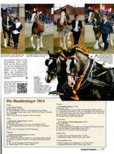 Bericht zur BZS 2014 in Starke Pferde (Seite 2/2)