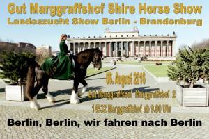 Shire Horse Narichten halbe Seite Heft 2 2016