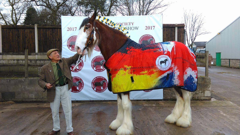 Shire Horse Spring Show 2017