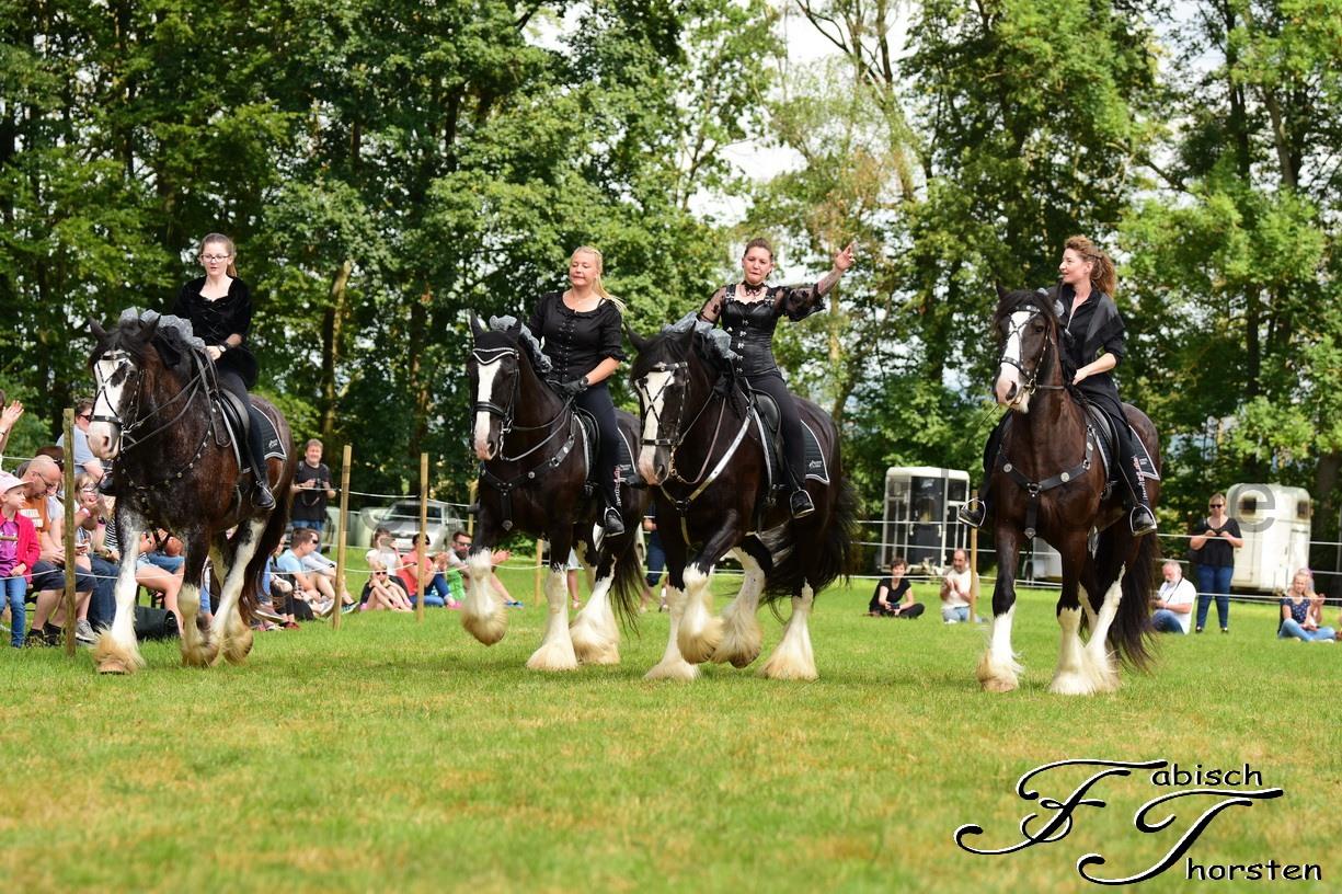 9. Oakstead Shire Horse Show